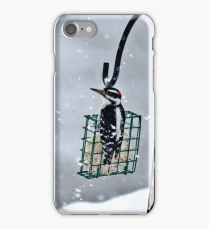 Hairy Woodpecker in the Storm II iPhone Case/Skin