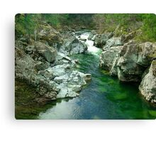 Cowichan Valley Stream Canvas Print