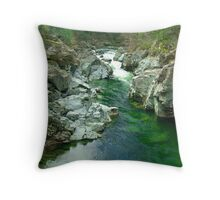 Cowichan Valley Stream Throw Pillow