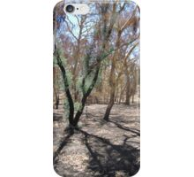 Regeneration after devastating Sampson Flat Fire. Adelaide Hills. iPhone Case/Skin
