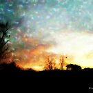 Daybreak by Lisa Taylor