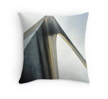 Stainless Wonder Throw Pillow