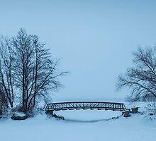 LaSalle Park Marina Bridge in Winter by David Jenkins