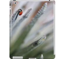 LadyBug Close Up iPad Case/Skin