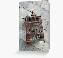 the birdcage Greeting Card