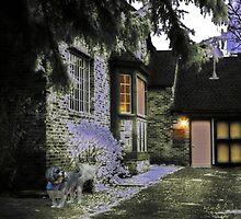 A Pretty House by digitalmidge