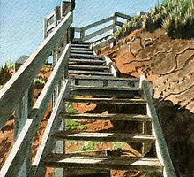 Up the steps, Schnapper Point by Freda Surgenor