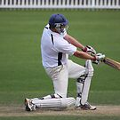 Cricket Series 4 by Steve Bullock