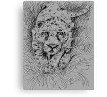LEOPARD (DRAWING)(C2012) Canvas Print