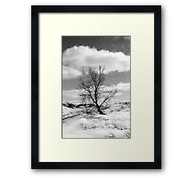 Windblown on the Dune Framed Print