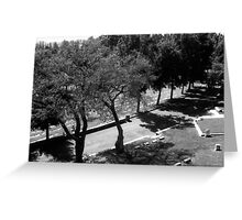 napa cemetery Greeting Card