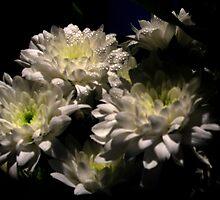 White Flowers 7 by elenmirie