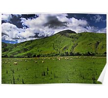 The New Zealand Countryside Poster