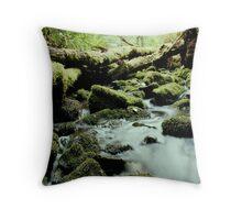 Tarkine stream below the falls Throw Pillow