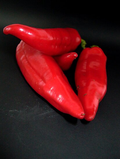 _Red Peppers_ by Rowan  Lewgalon
