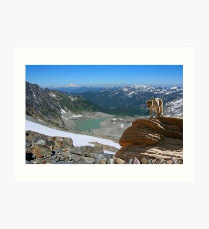 1069-Northwest Habitat Art Print