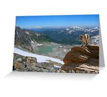 1069-Northwest Habitat Greeting Card