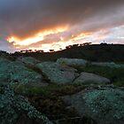 Sunset at Bindaree by vixstix