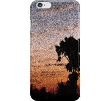 Sunset fresco iPhone Case/Skin