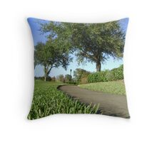The Sidewalk Throw Pillow