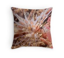 Juvenile Lionfish Throw Pillow