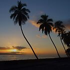 2007 ~ Lahaina Sunset  by Marjorie Wallace