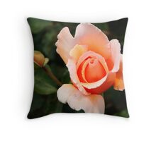 Peach Rose Bud Throw Pillow