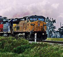 Crazy Train by Angi Baker
