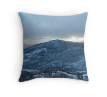 Homeward Throw Pillow