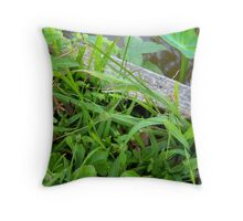 Wildflower and the Lizard Throw Pillow