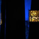 27.2.2015: Light Painting in Abandoned Cowshed II by Petri Volanen