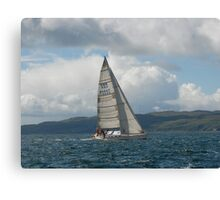 West Highland Week 2007 - ORKNEY ROSE Canvas Print