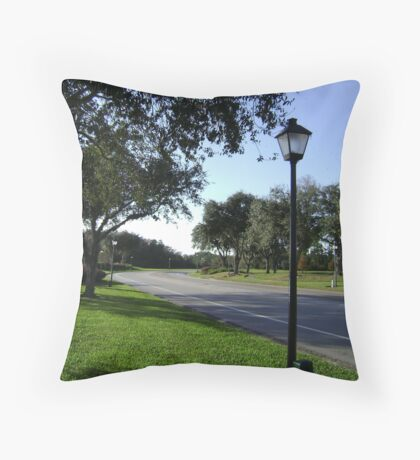 The Parkway Throw Pillow