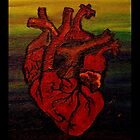 Anatomical Heart by fringek