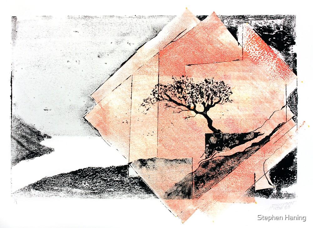 Spirit Point by Stephen Haning