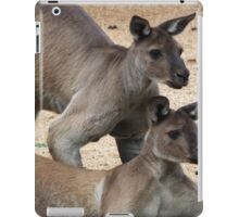 Kangaroo Two, Australia iPad Case/Skin