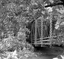 Wildman's Bridge black & white by mnkreations
