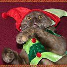 Merry Dang Christmas Too!!! by Lolabud