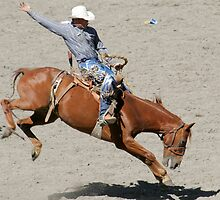Rodeo Saddle Bronc Rider - 2737 by BartElder