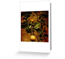Bonsai Pear Greeting Card