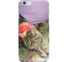 *Lily my adored furry friend* iPhone Case/Skin