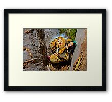 Tiger Doll with Emo Barbie Framed Print