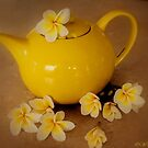 My Yellow Teapot by wallarooimages