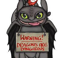 Toothless the dangerous. by MIKAYLAKATE