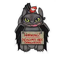 Toothless the dangerous. Photographic Print