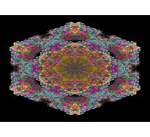 Fractal 19 Photographic Print