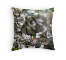 Backlit White Spring Flowers Throw Pillow
