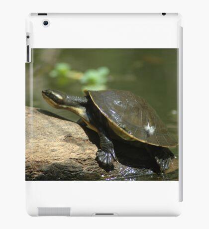 Tortoise. iPad Case/Skin