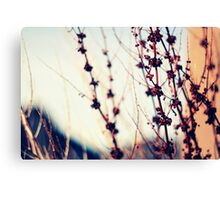 We should all be thankful  for those people who rekindle the inner spirit (Albert Schweitzer) Canvas Print