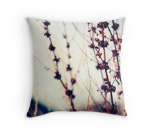 We should all be thankful  for those people who rekindle the inner spirit (Albert Schweitzer) Throw Pillow